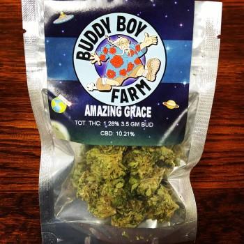 Amazing Grace high CBD marijuana flower