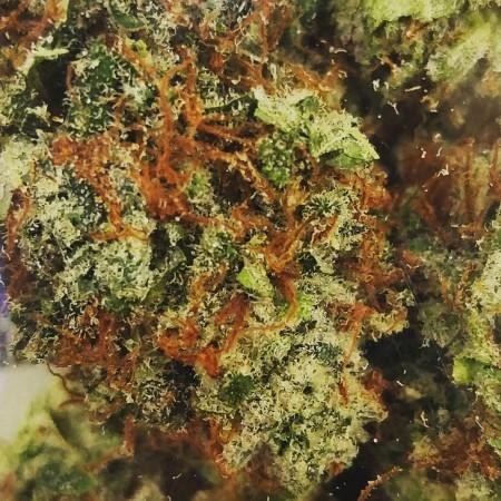 Alaskan Thunder Fuck cannabis flower