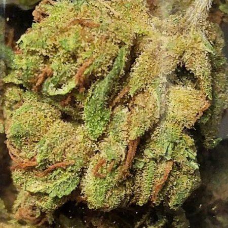 NYC Diesel marijuana from Cannasol