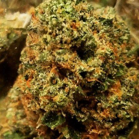 Blob OG cannabis Bellingham
