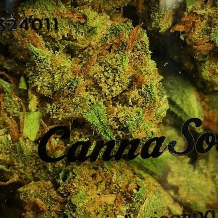 Double Lemon Cheesecake Cannasol Bellingham WA weed cannabis
