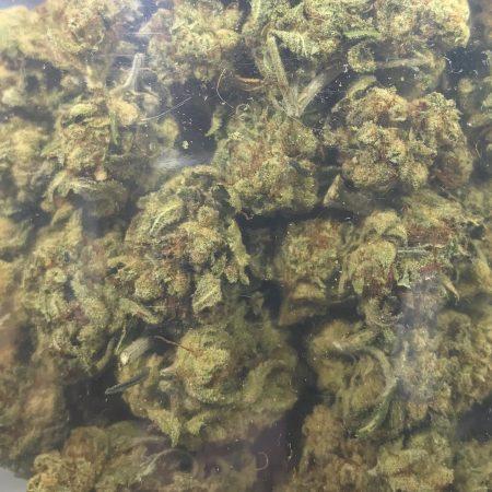 Alien Kush Mount Baker Gardens Bellingham Cannabis, Bellingham pot shop, Bellingham weed