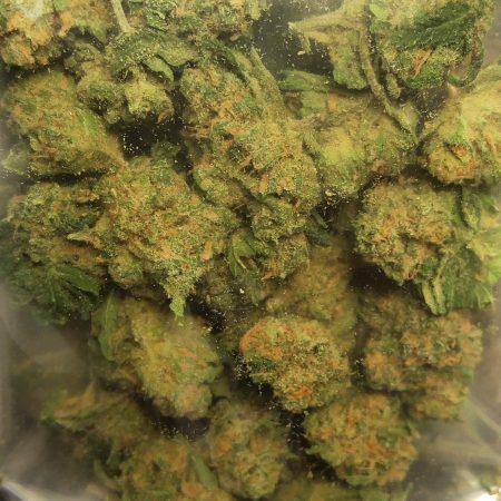 Romulan cannabis from Buddy Boy LCG