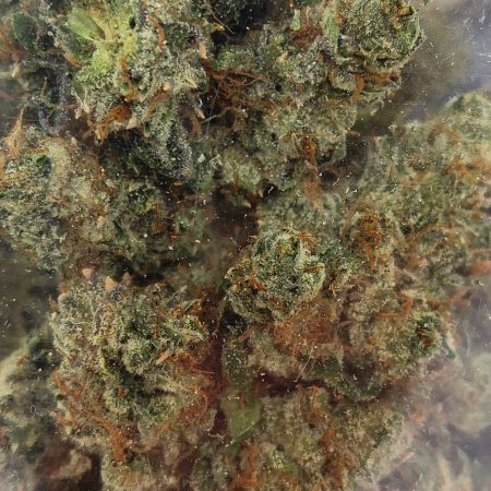 Cherry Pie by Golden Tree Productions